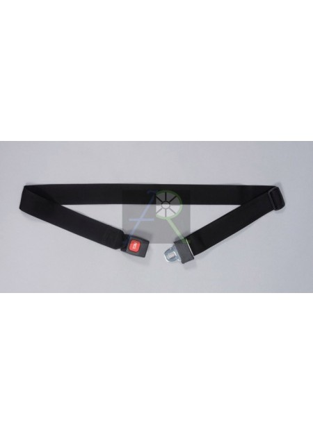ADE wheelchair seat belt