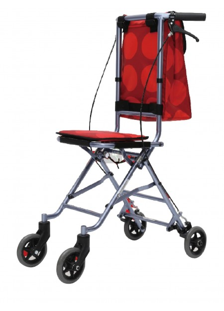Lightweight and Stylish Shopping Walker